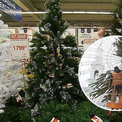 Где в Киеве купить легальную елку: список рынков