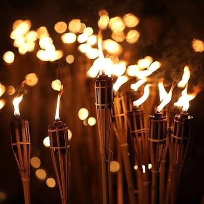 В центре Киева пройдет факельное шествие