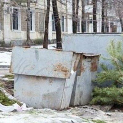 Не несите на мусорку: украинцам рассказали, куда деть высохшую праздничную елку. Адреса