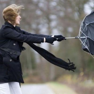 21 января в Киеве ожидаются сильные порывы ветра