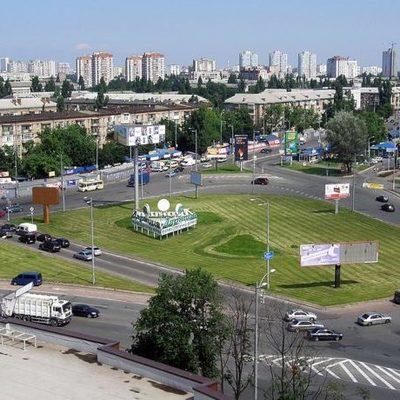 Романтический вандал: в Днепровском районе украли дерево-«валентинку»