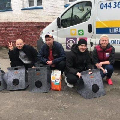 В Буче заключенные будут ухаживать за бездомными котами
