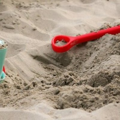 В детских песочницах Киева массовое нашествие паразитов, подробности