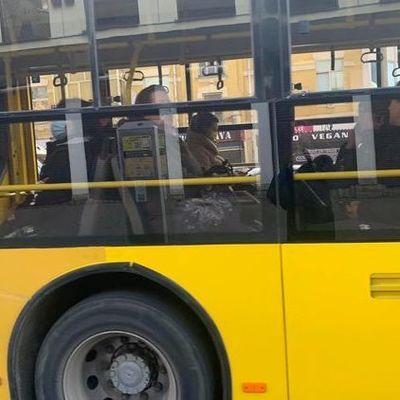 Как получить спецразрешение на проезд в транспорте