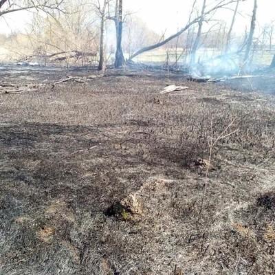 Пенсионерка чуть не сожгла село под Киевом (фото)
