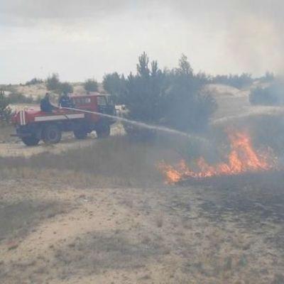 Пожар в Чернобыльской зоне распространился на территорию более 100 гектаров