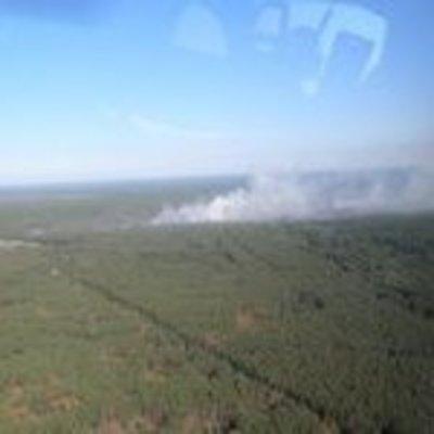В чернобыльской зоне до 35 га увеличилась площадь пожара – ГСЧС
