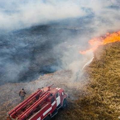 Пожар в Чернобыльской зоне удалось потушить