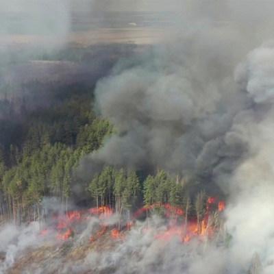 Глава МОЗ призвал жителей Киева, Киевской и Житомирской областей не выходить из дома утром