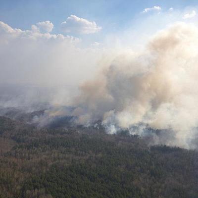 В Чернобыльской зоне и на Житомирщине спасатели продолжают бороться с пожарами
