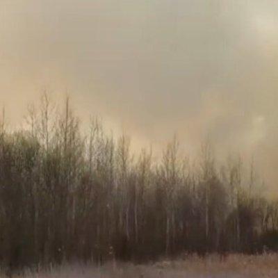 Под Киевом разгорелся новый масштабный пожар
