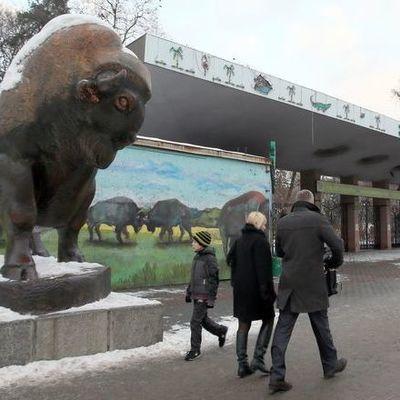 В Киеве экскаваторы снесли старый вход в столичный зоопарк