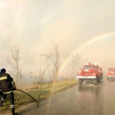 В ГСЧС рассказали о состоянии пожаров в Киевской и Житомирской области