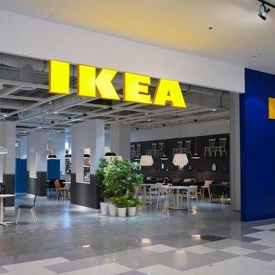 Стулья IKEA делают из древесины, незаконно вырубленной в украинских Карпатах, — исследование