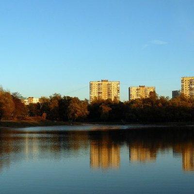 Вокруг мелеющего Синего озера на Виноградаре создадут парк