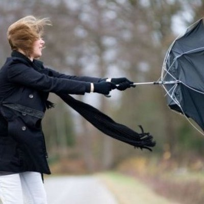 Киевлян предупреждают об опасности из-за ветра