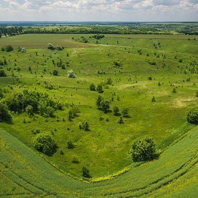 В ботаническом заказнике Киевщины фермеры вирощували сою